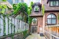 49 Granby Street - Backyard 1